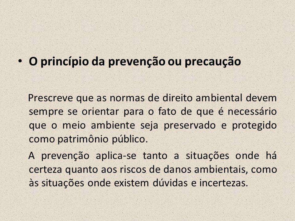 O princípio da prevenção ou precaução