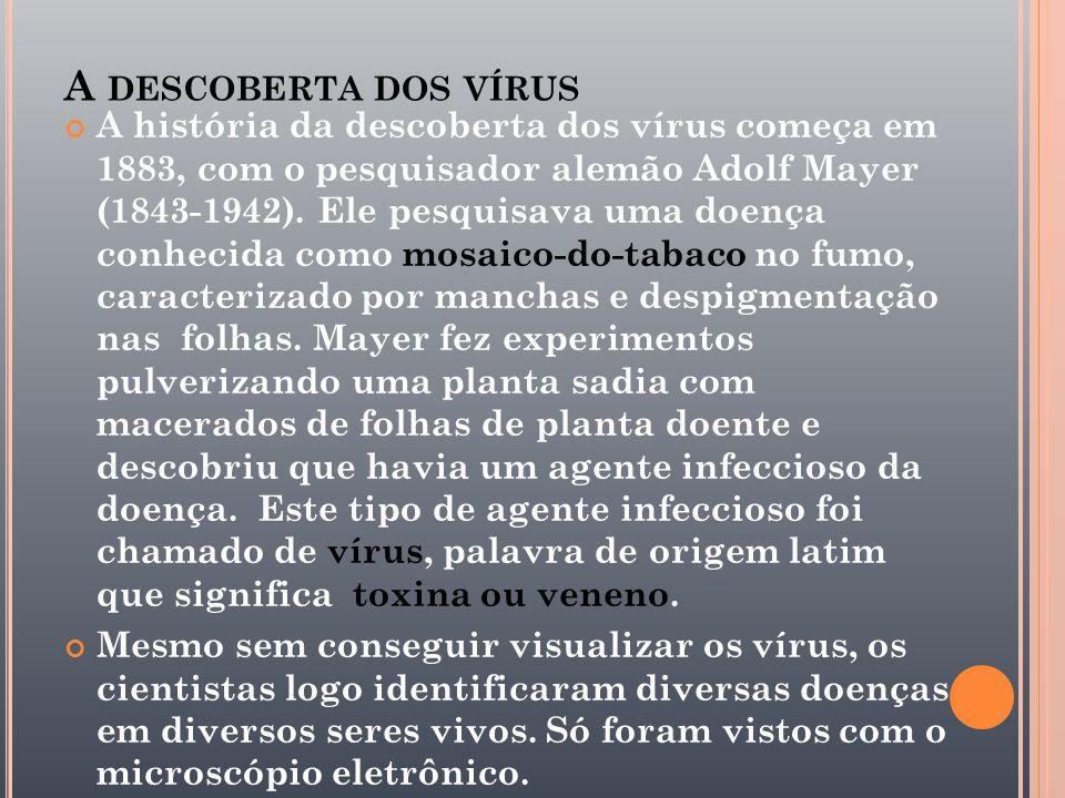 A descoberta dos vírus