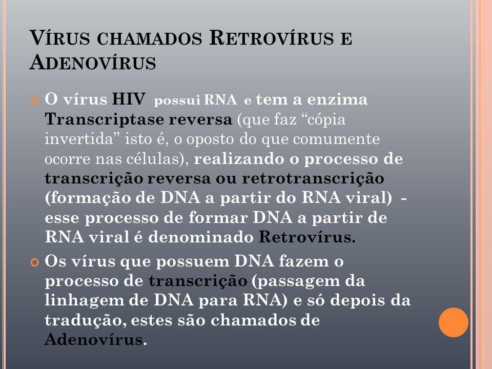 Vírus chamados Retrovírus e Adenovírus