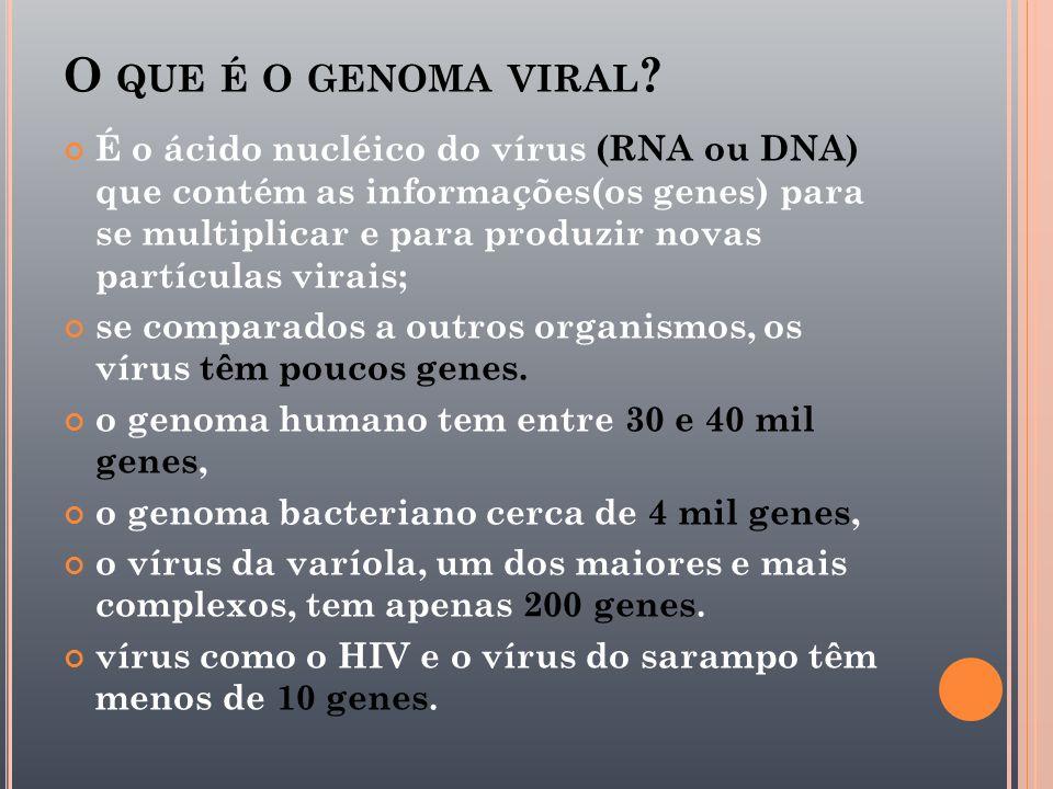 O que é o genoma viral