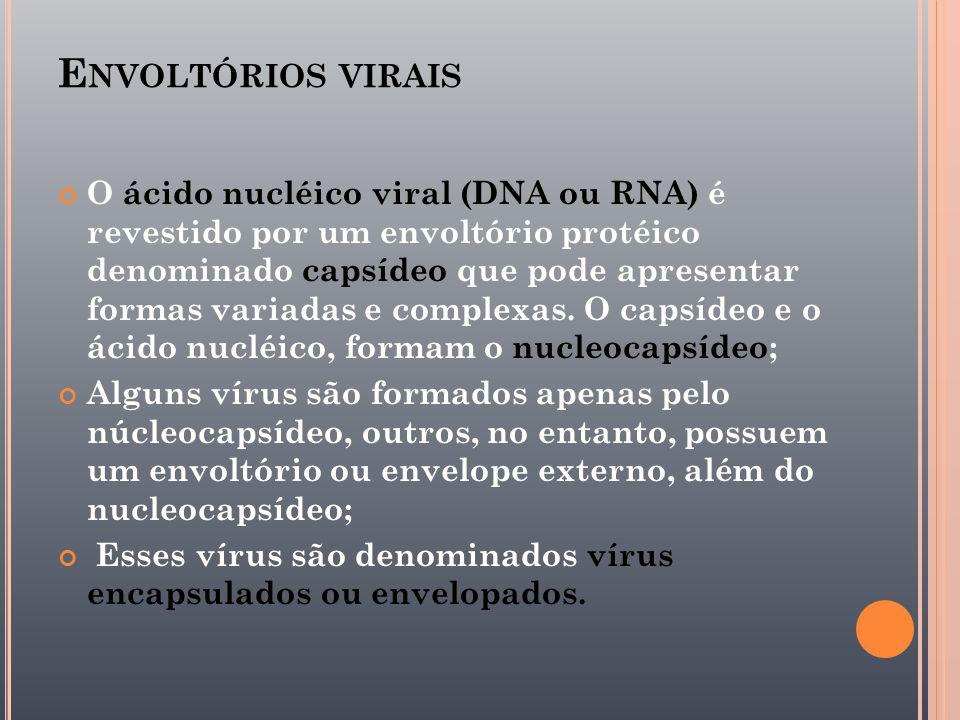 Envoltórios virais