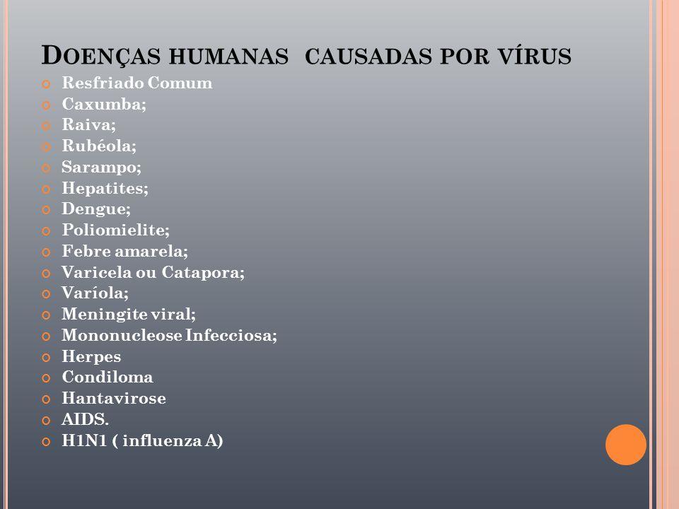 Doenças humanas causadas por vírus