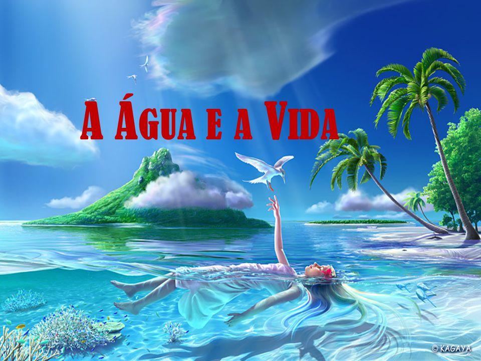 A Água e a Vida