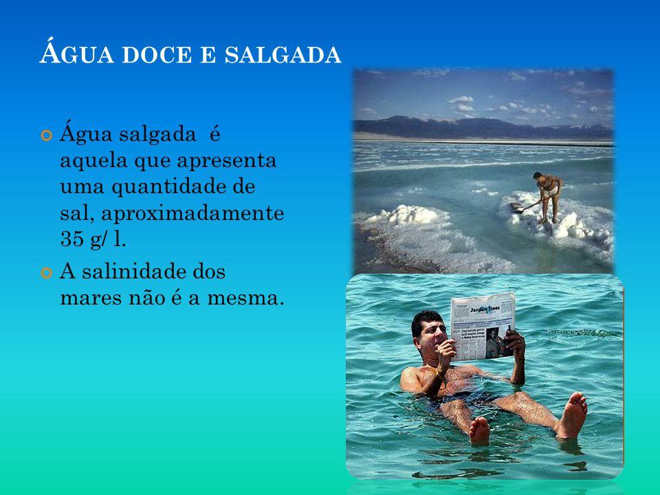 Água doce e salgada Água salgada é aquela que apresenta uma quantidade de sal, aproximadamente 35 g/ l.