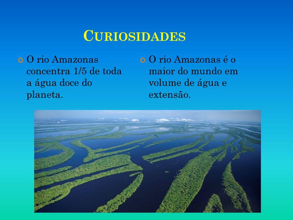 Curiosidades O rio Amazonas concentra 1/5 de toda a água doce do planeta.