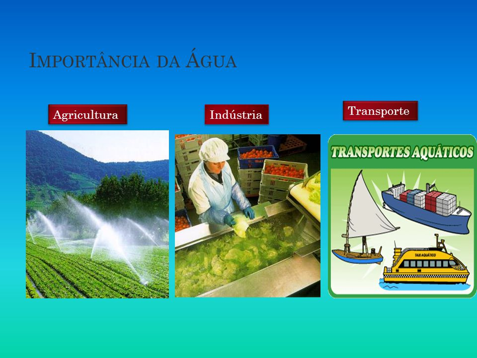 Importância da Água Transporte Agricultura Indústria