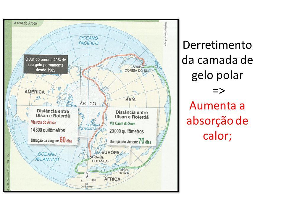Derretimento da camada de gelo polar