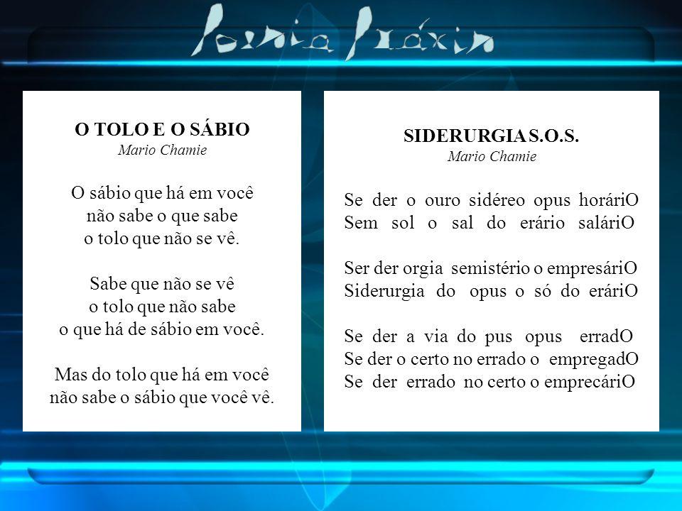 O TOLO E O SÁBIO SIDERURGIA S.O.S.