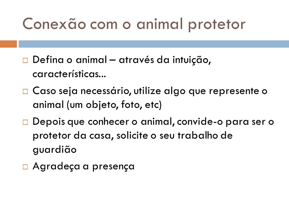 Conexão com o animal protetor
