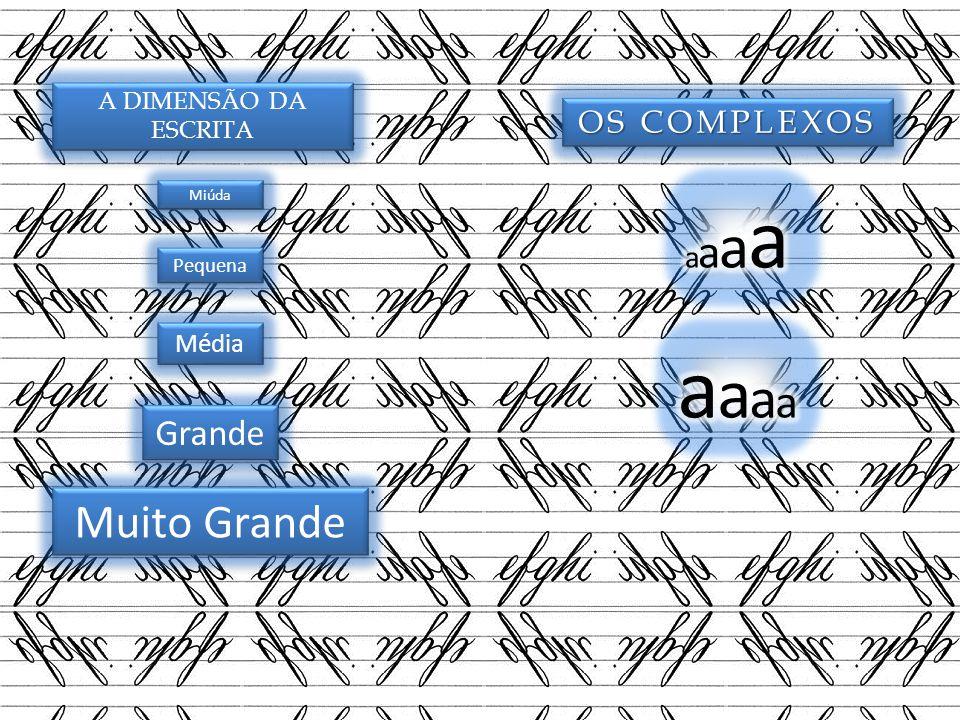 aaaa Muito Grande Grande OS COMPLEXOS aaaa Média A DIMENSÃO DA ESCRITA