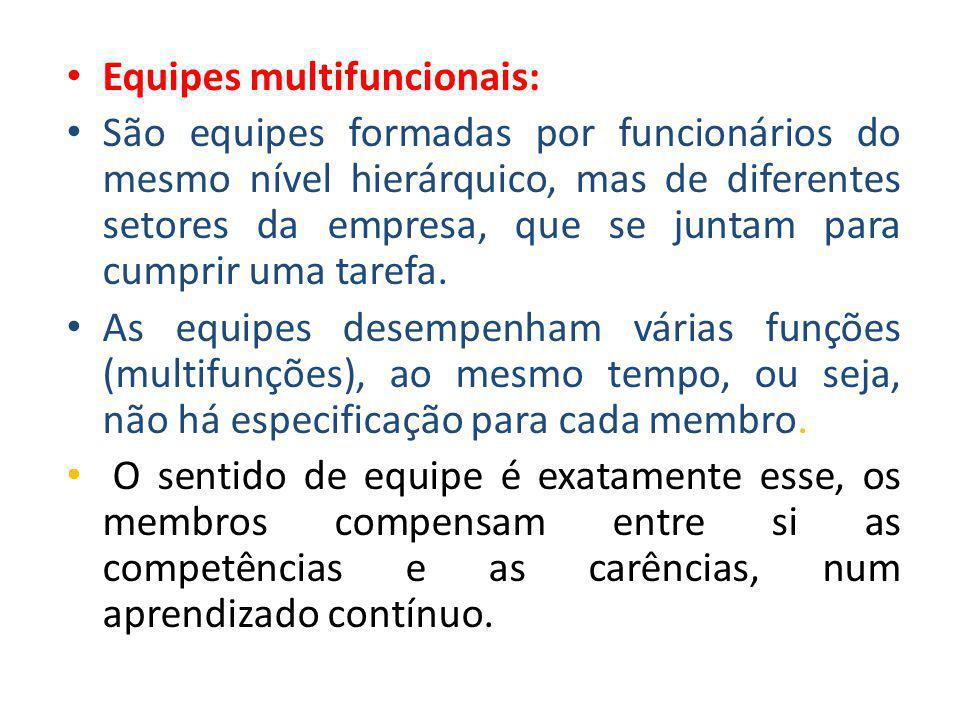 Equipes multifuncionais: