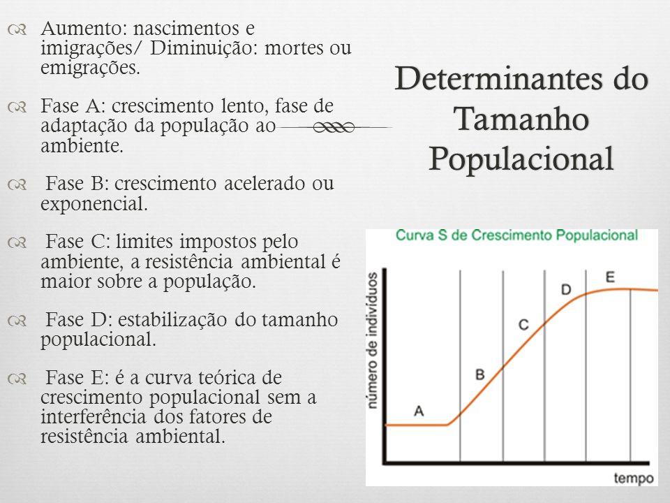 Determinantes do Tamanho Populacional