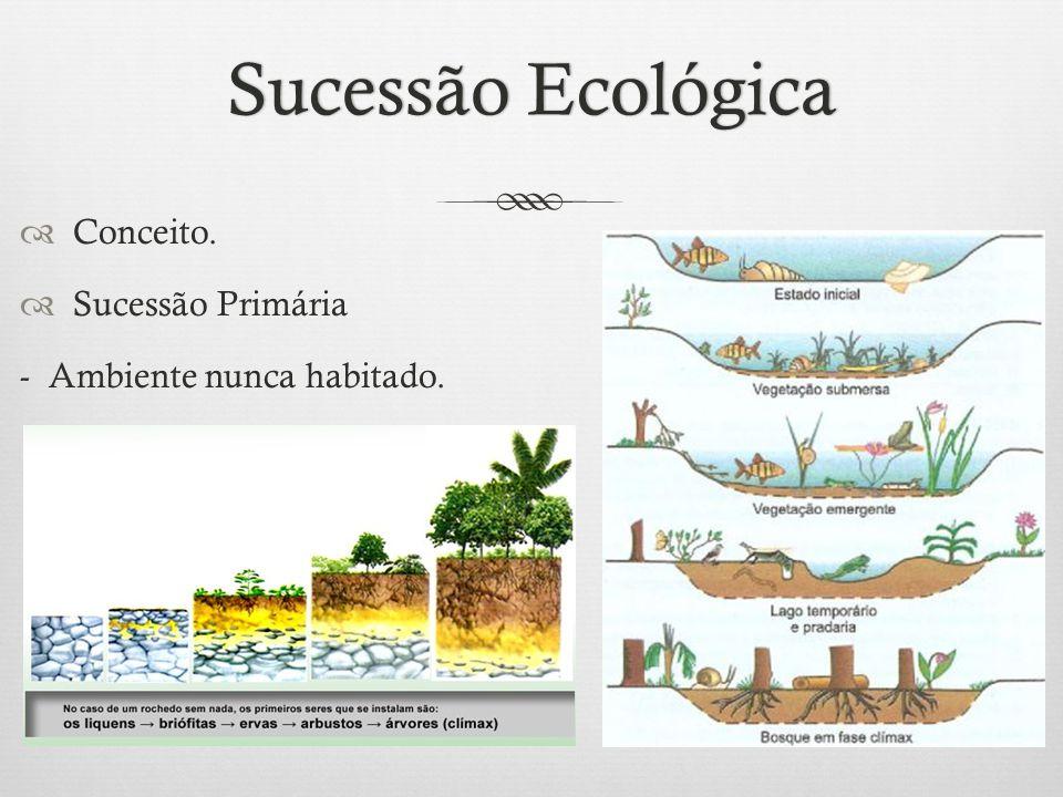 Sucessão Ecológica Conceito. Sucessão Primária