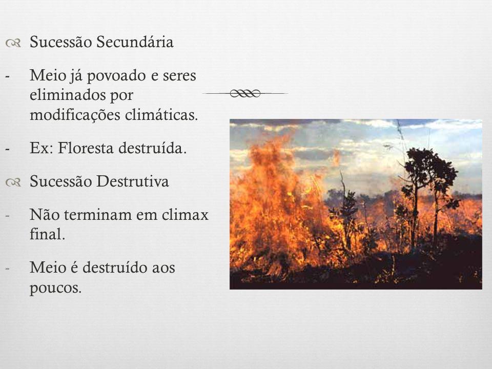 Sucessão Secundária - Meio já povoado e seres eliminados por modificações climáticas. - Ex: Floresta destruída.