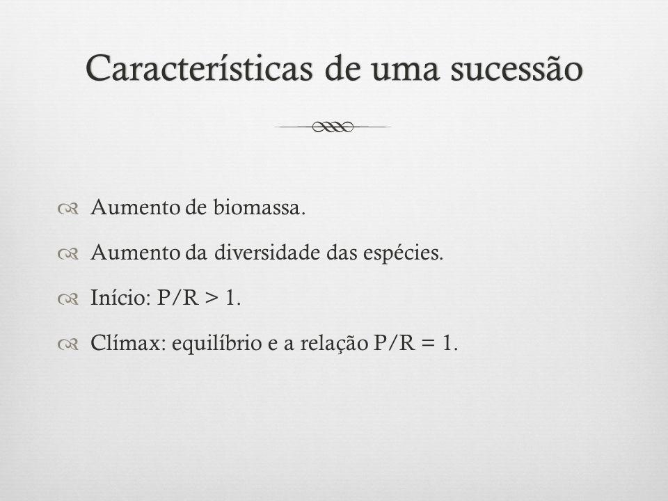 Características de uma sucessão