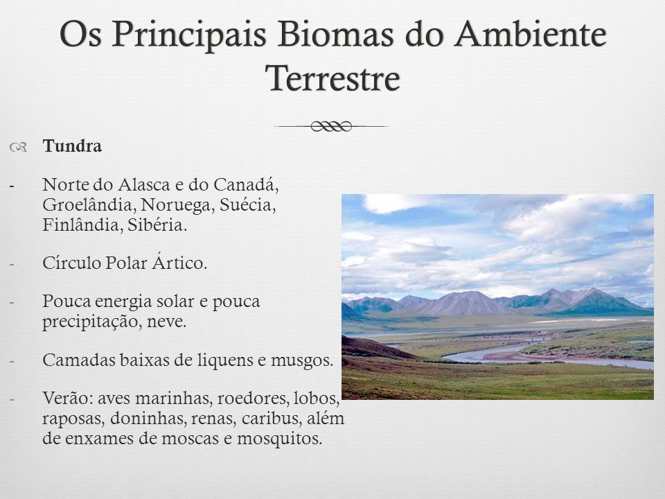 Os Principais Biomas do Ambiente Terrestre
