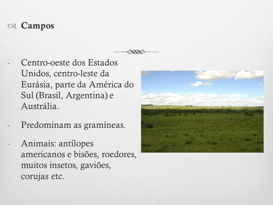 Campos Centro-oeste dos Estados Unidos, centro-leste da Eurásia, parte da América do Sul (Brasil, Argentina) e Austrália.