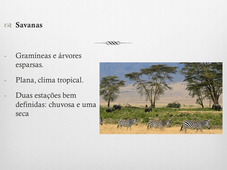 Savanas Gramíneas e árvores esparsas. Plana, clima tropical.