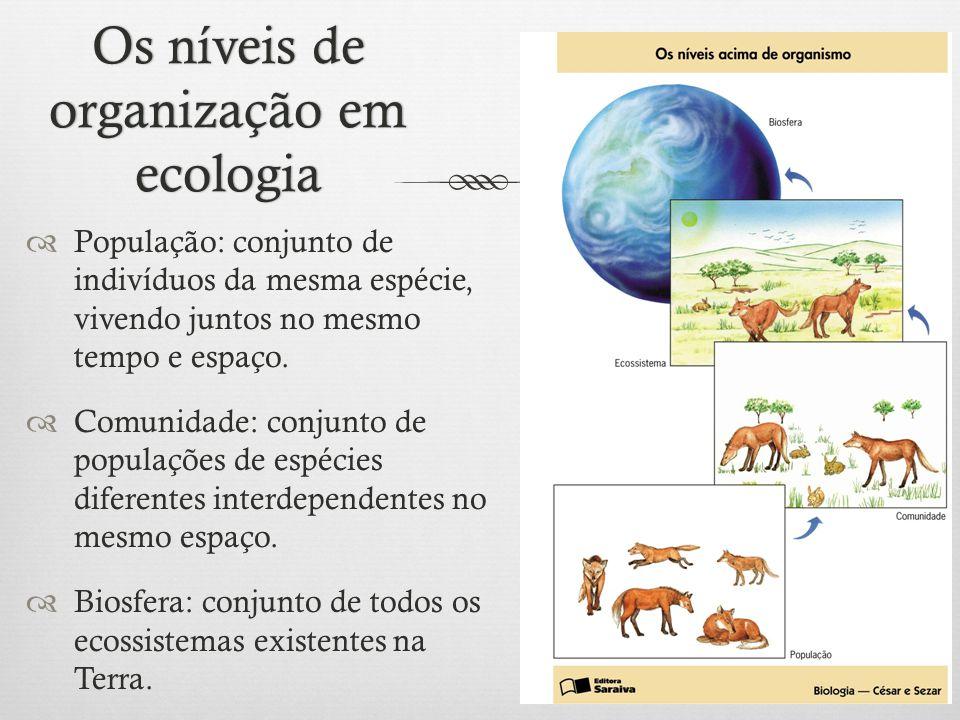 Os níveis de organização em ecologia