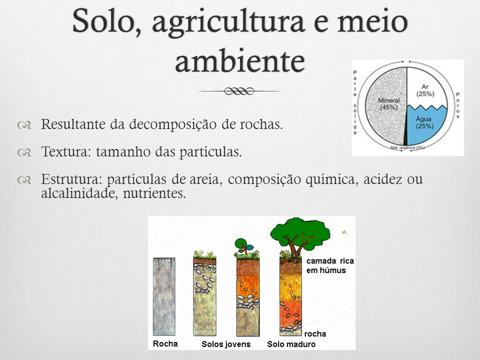 Solo, agricultura e meio ambiente