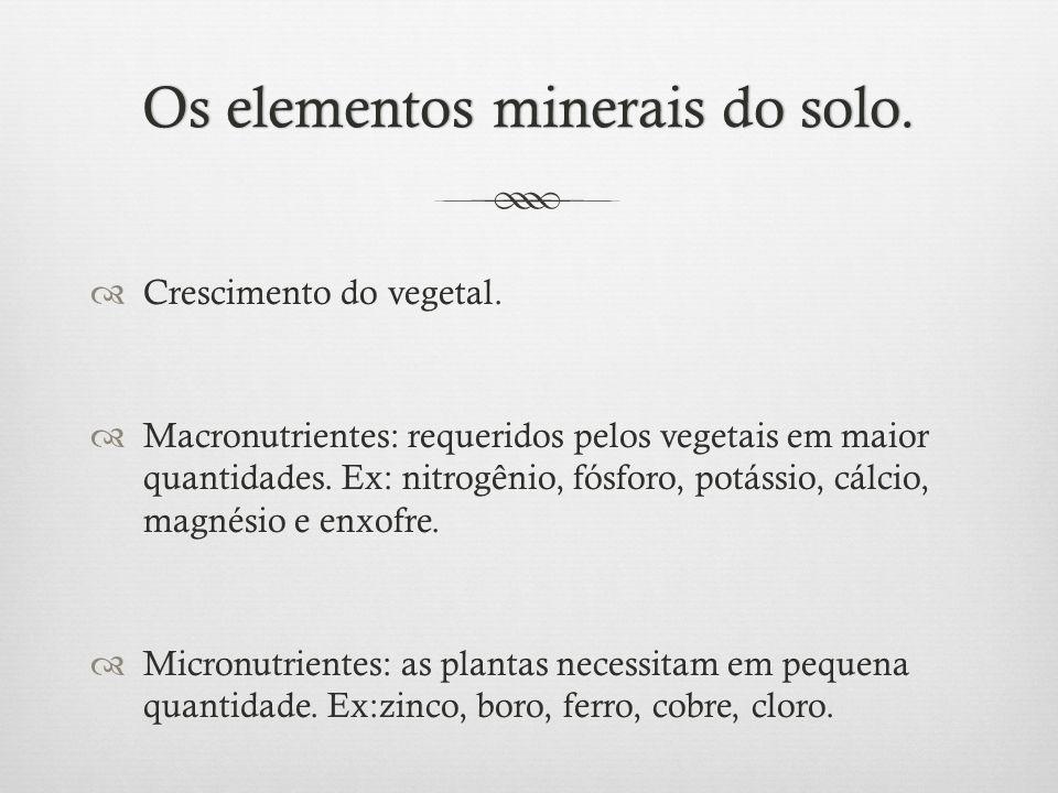 Os elementos minerais do solo.