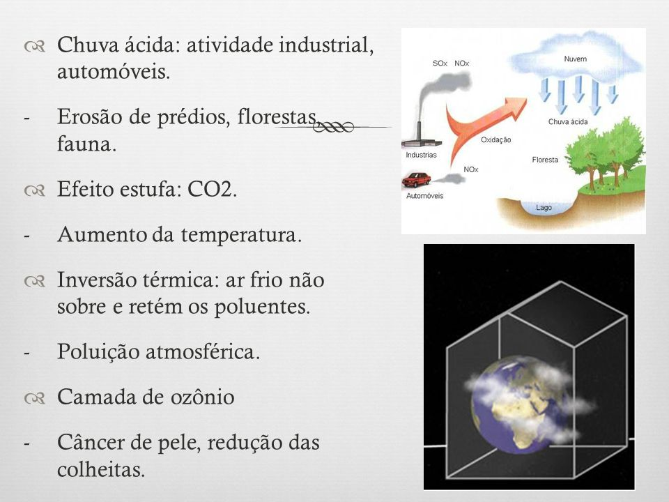 Chuva ácida: atividade industrial, automóveis.