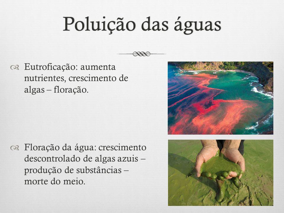 Poluição das águas Eutroficação: aumenta nutrientes, crescimento de algas – floração.