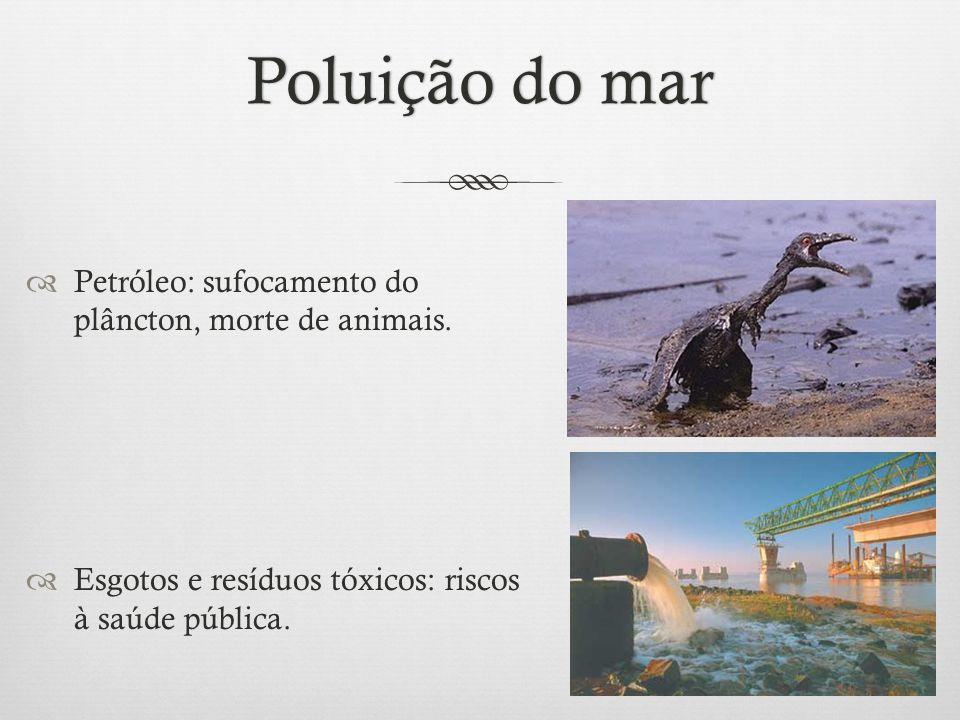 Poluição do mar Petróleo: sufocamento do plâncton, morte de animais.