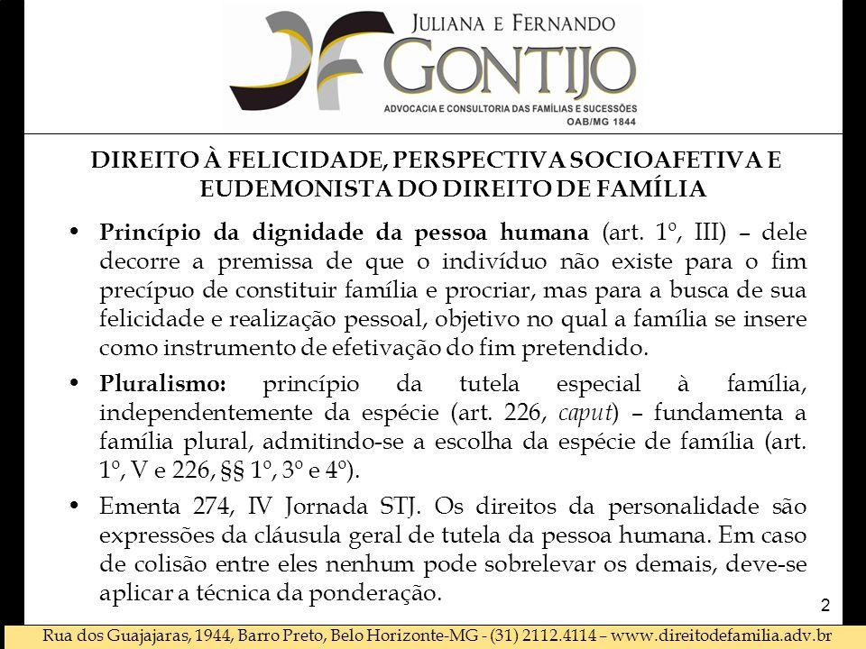 DIREITO À FELICIDADE, PERSPECTIVA SOCIOAFETIVA E EUDEMONISTA DO DIREITO DE FAMÍLIA