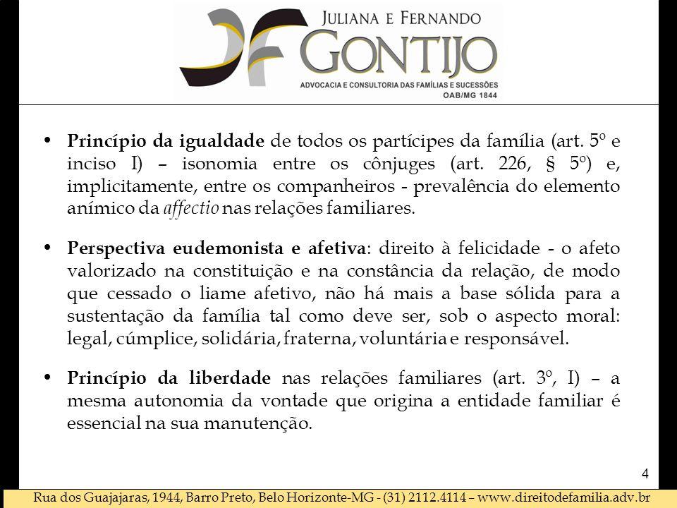 Princípio da igualdade de todos os partícipes da família (art