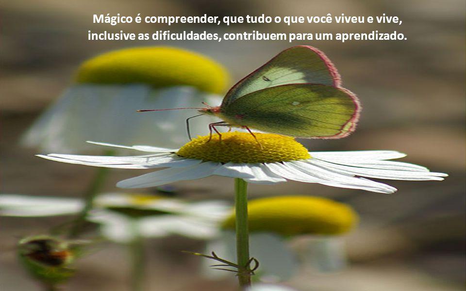 Mágico é compreender, que tudo o que você viveu e vive,
