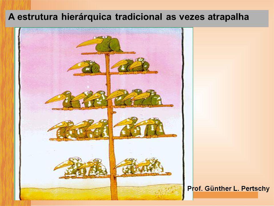 A estrutura hierárquica tradicional as vezes atrapalha