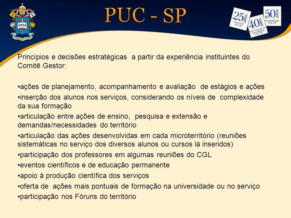 Princípios e decisões estratégicas a partir da experiência instituintes do Comitê Gestor: