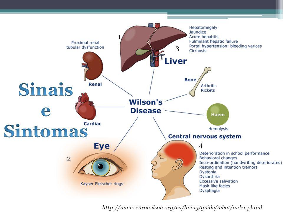 1 3. Sinais. e. Sintomas.