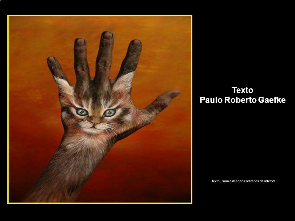 Texto Paulo Roberto Gaefke