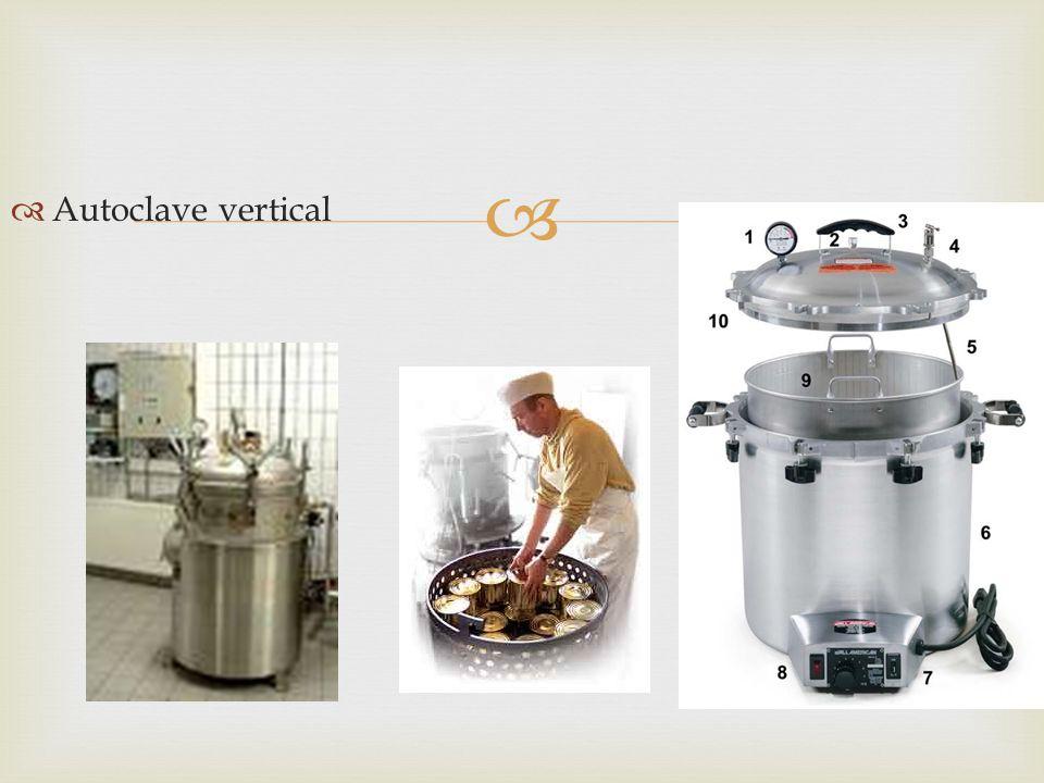 Autoclave vertical
