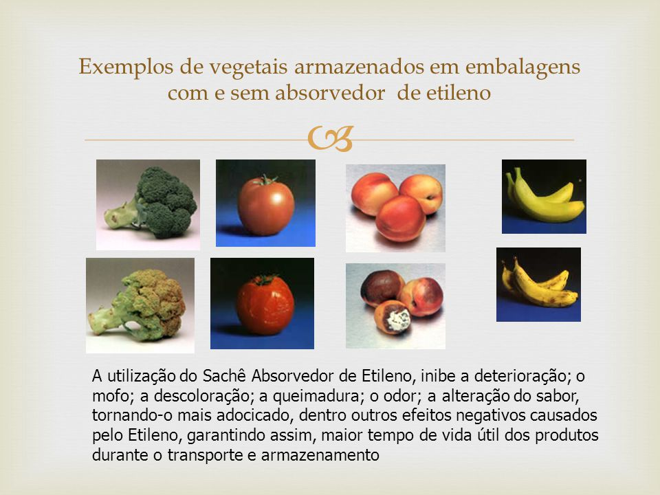 Exemplos de vegetais armazenados em embalagens com e sem absorvedor de etileno