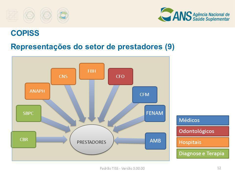 Representações do setor de prestadores (9)