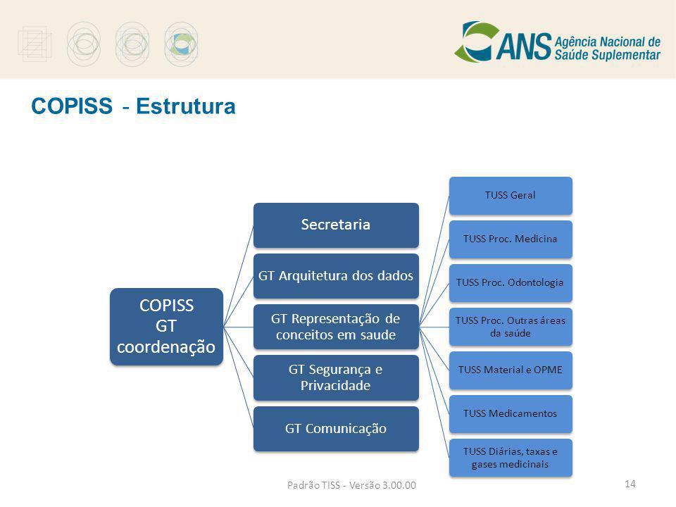 COPISS - Estrutura COPISS GT coordenação Secretaria