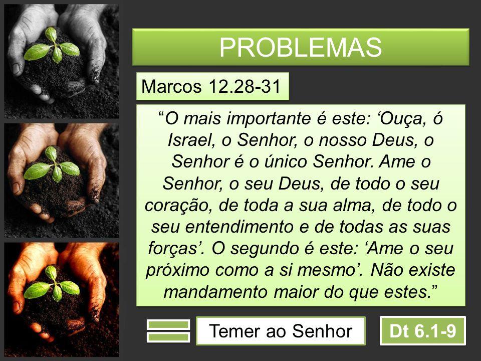 PROBLEMAS Marcos 12.28-31 Temer ao Senhor Dt 6.1-9