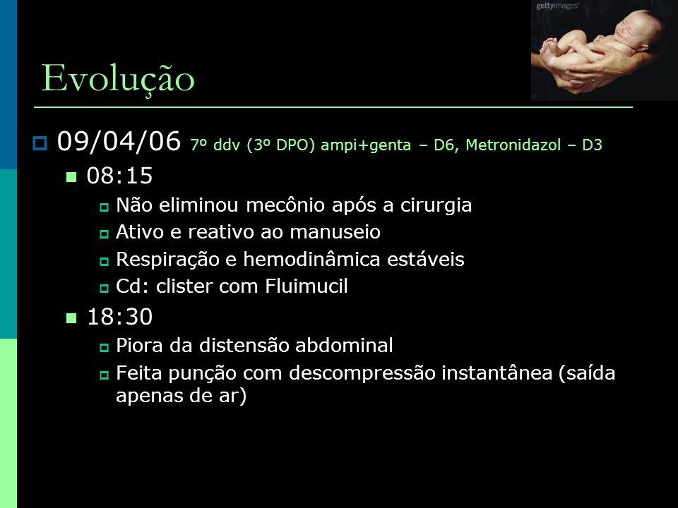 Evolução 09/04/06 7º ddv (3º DPO) ampi+genta – D6, Metronidazol – D3
