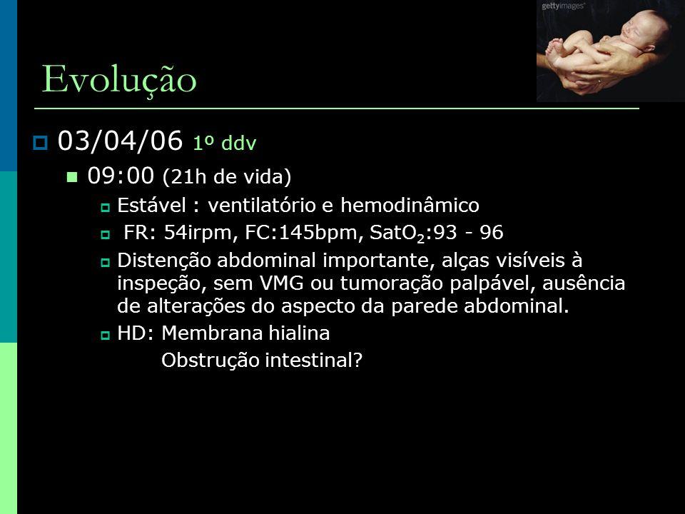 Evolução 03/04/06 1º ddv 09:00 (21h de vida)
