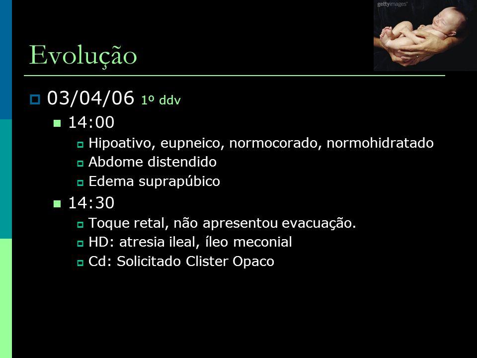 Evolução 03/04/06 1º ddv. 14:00. Hipoativo, eupneico, normocorado, normohidratado. Abdome distendido.