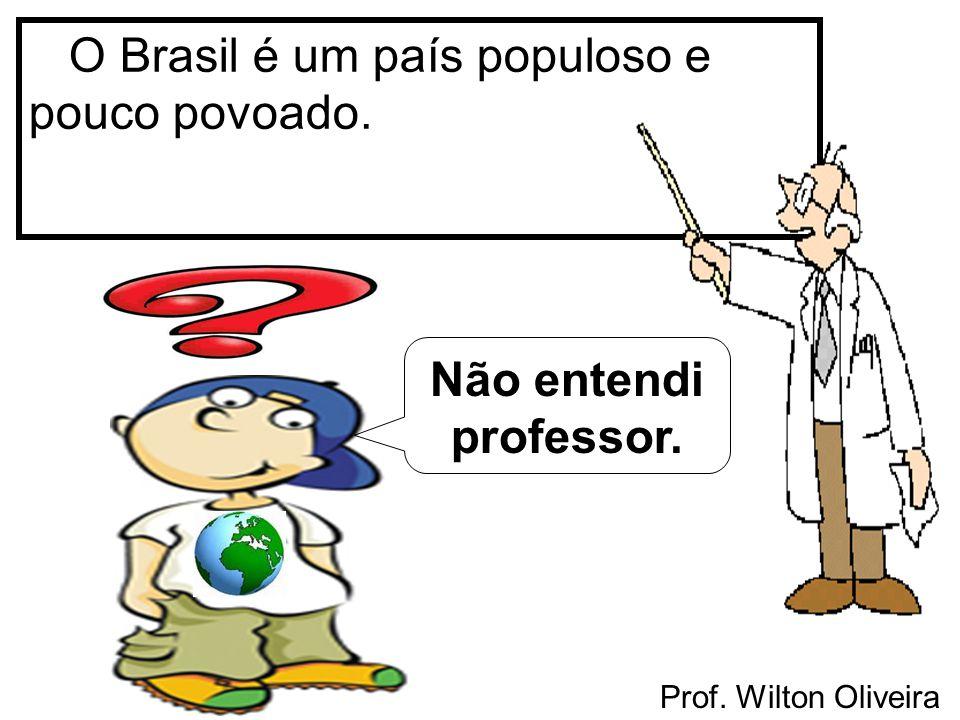 O Brasil é um país populoso e pouco povoado.