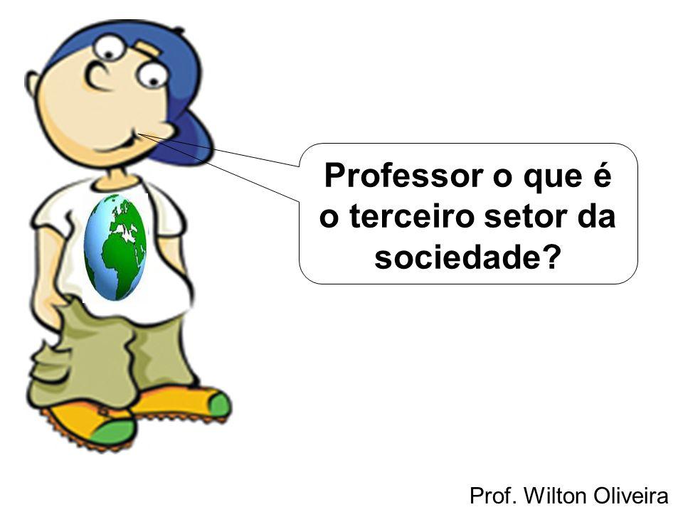 Professor o que é o terceiro setor da sociedade