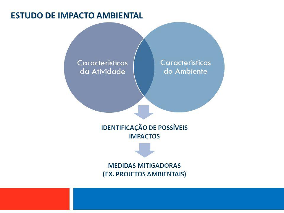 (EX. PROJETOS AMBIENTAIS) IDENTIFICAÇÃO DE POSSÍVEIS IMPACTOS