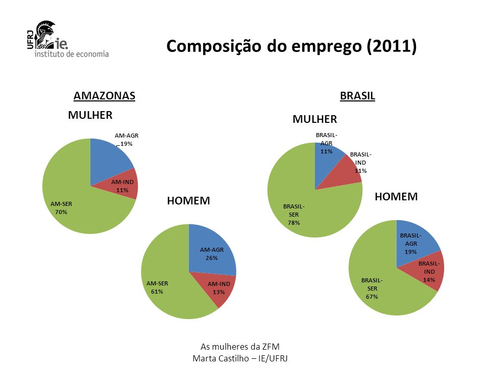 Composição do emprego (2011)
