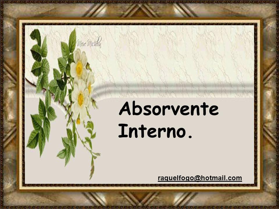 Absorvente Interno. raquelfogo@hotmail.com