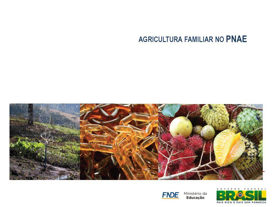 agricultura familiar no PNAE