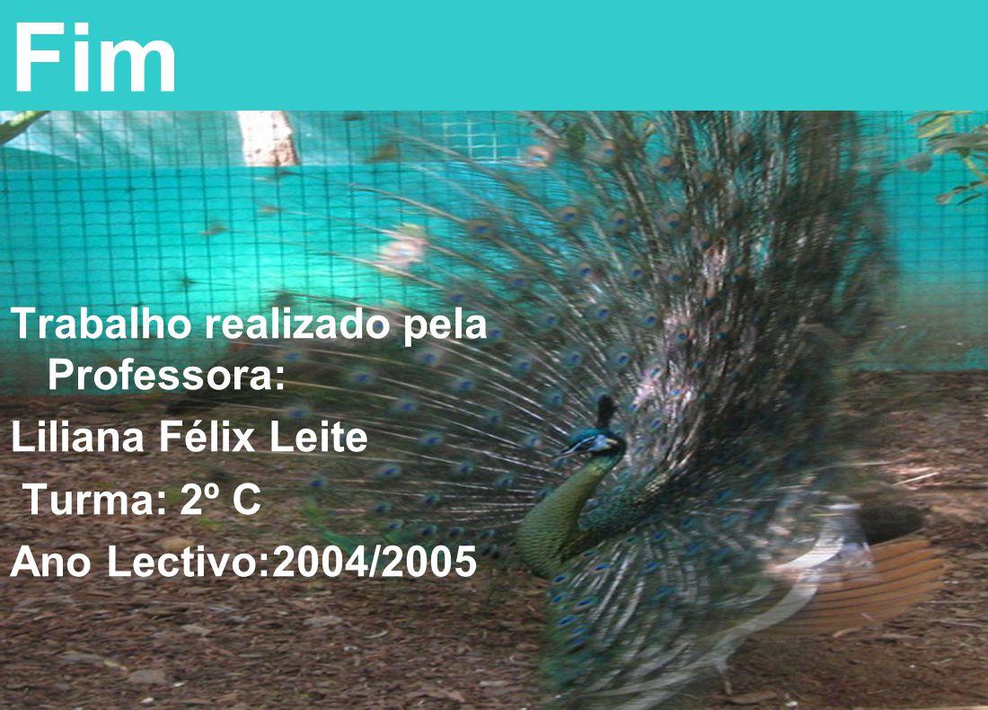 Fim Trabalho realizado pela Professora: Liliana Félix Leite